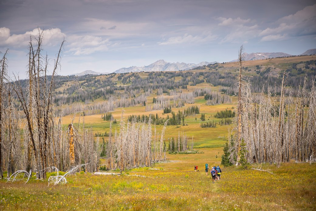Big Agnes Employees hiking the 1101 trail along the Continental Divide near Steamboat Springs, CO.